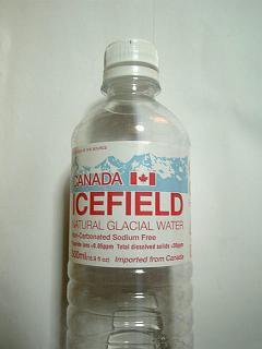 カナダのアイスフィールド
