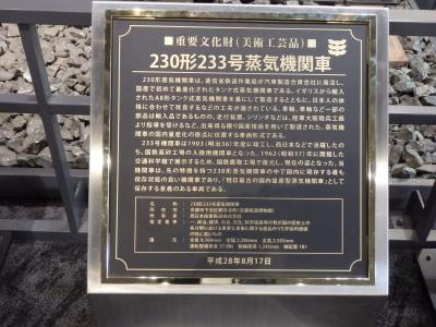 P5040249.JPG