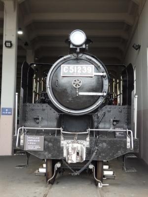 P5040323.JPG