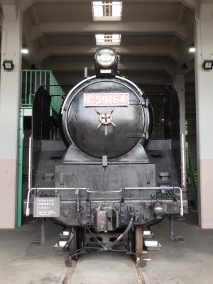 P5040325.JPG