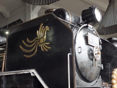 P5040330.JPG