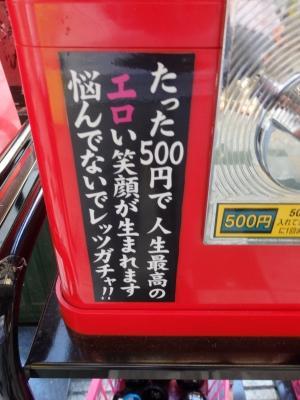 P5020214.JPG