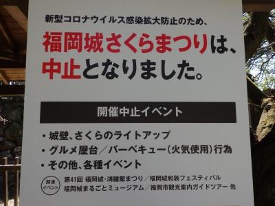 P3200065.JPG