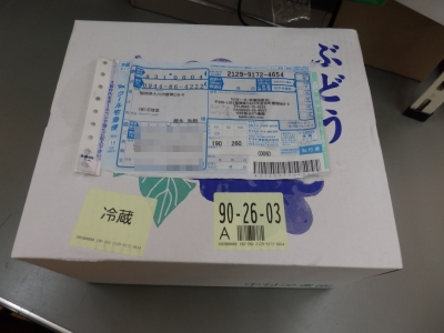 P9090024.JPG