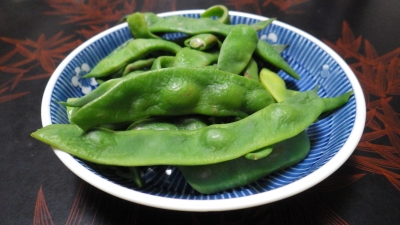 e140908 茹でインゲン豆:モロッコ
