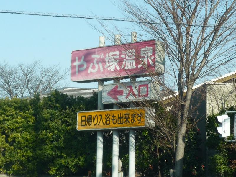 ヘビ センター 嵐 渓 香