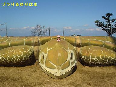 yurihamatomari3