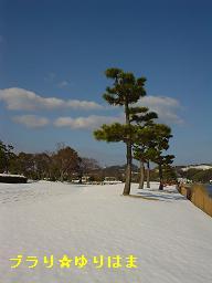 yurihamanofuukei3