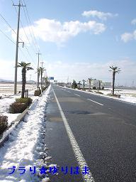 yurihamanofuukei6
