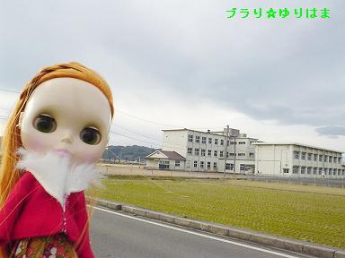 hawaihigashishou