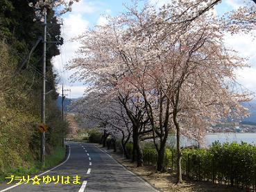 fujitsu4