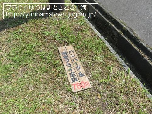 【岡山県】元気いっぱい蒜山ひまわり