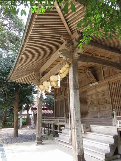 【琴浦町】桜吹雪き舞う!!方見神社