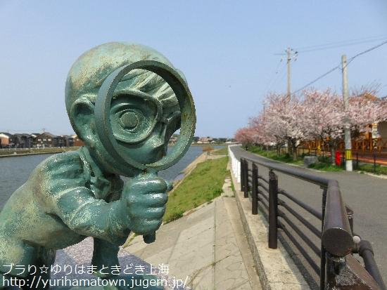 【北栄町】米花商店街の桜