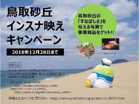 鳥取砂丘インスナ映えキャンペーン!!