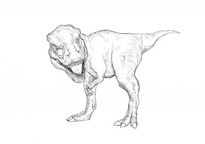 ティラノサウルス線.jpg