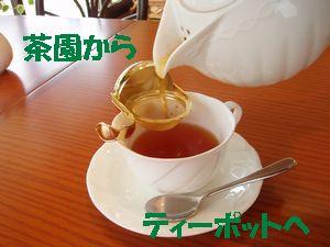 おいしい紅茶!
