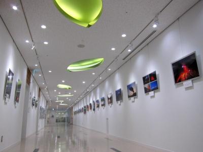 イメージ廊下