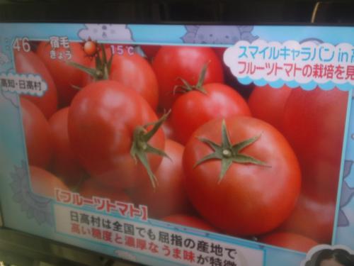 日高村のトマトが