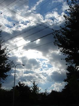 晴れの日は気持ちが良いですね。