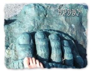 アテナの足とあくびの足(*^。^*)