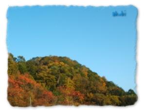 10月15日の紅葉