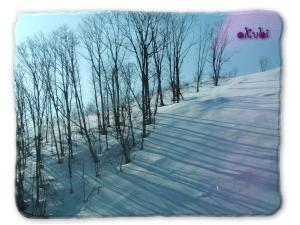 半分木。半分雪。