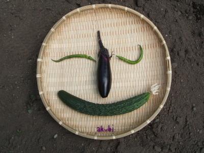 初収穫でできた野菜の顔〜♪