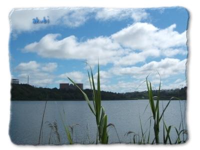 春採湖 周囲4.7キロ