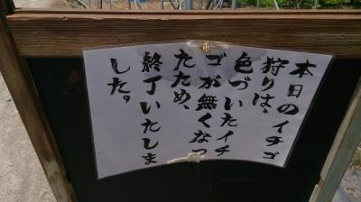 いちご狩り2.jpg