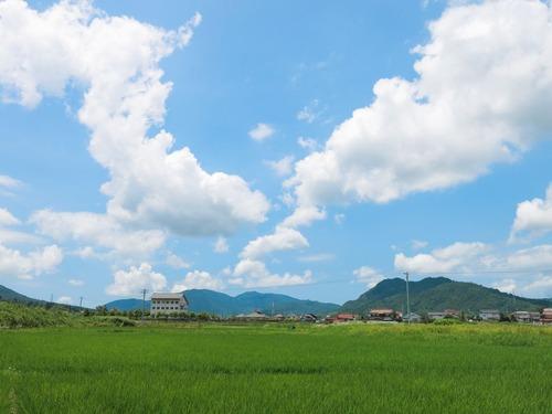 田園風景3.jpg