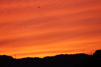 広からの夕景3.jpg