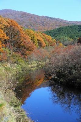 聖湖上流の紅葉.jpg