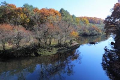 聖湖上流の紅葉2.jpg