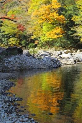 匹見峡の紅葉5.jpg