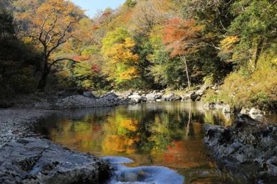 匹見峡の紅葉8.jpg