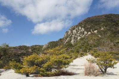 自然の展望台5.jpg