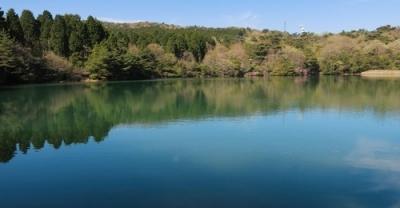 昭和池.jpg
