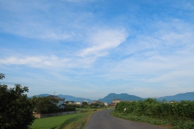 黒瀬の田園風景.jpg