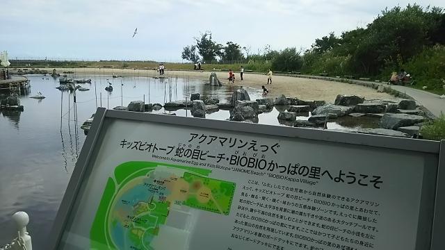 DSC_0675.JPG