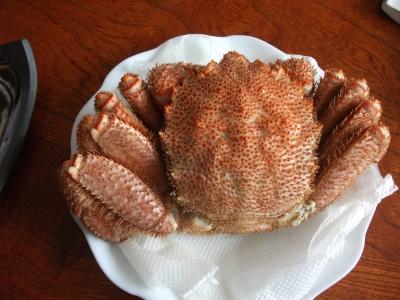 |Crab. Kani!