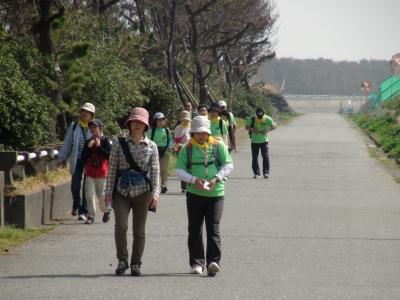 田子の浦近く