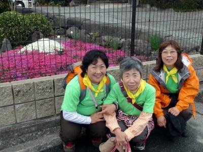 芝桜の富士山
