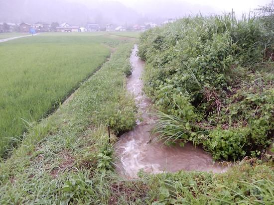 大雨 2019.07