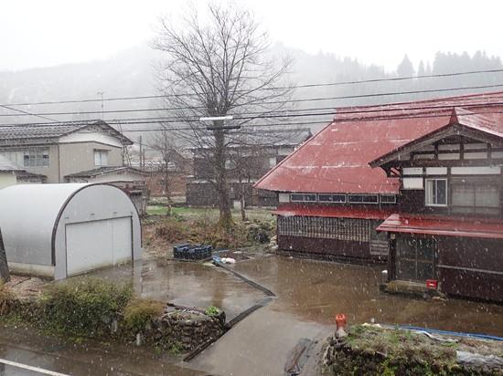 また「雪模様」