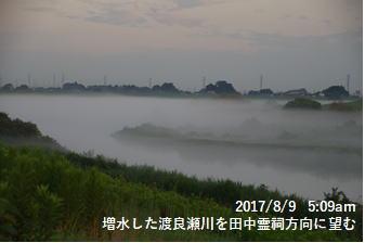 増水した渡良瀬川を田中霊祠方向に望む