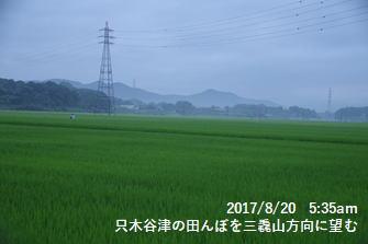 只木谷津の田んぼを三毳山方向に望む