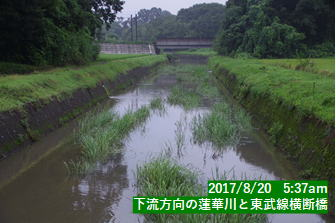 下流方向の蓮華川と東武線横断橋