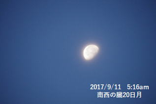 南西の朧20日月