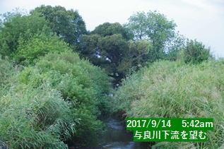 与良川下流を望む